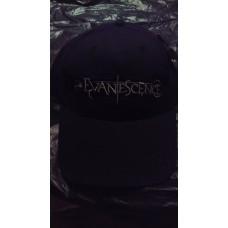 Метъл шапка Evanescence