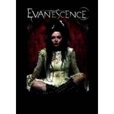 Метъл суичър Evanescence
